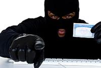 Masked Bandit Social Security Card Stolen